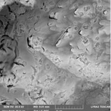 Титан покрытый платиной