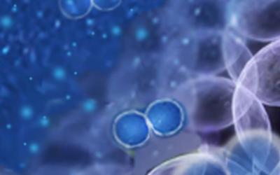 Отзывы о водороде